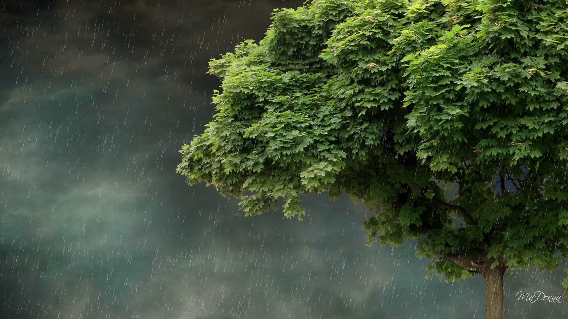 Full Screen Desktop Fall Leaves Wallpaper Beautiful Rainy Landscapes Wallpapers Hd 2018 183 ①