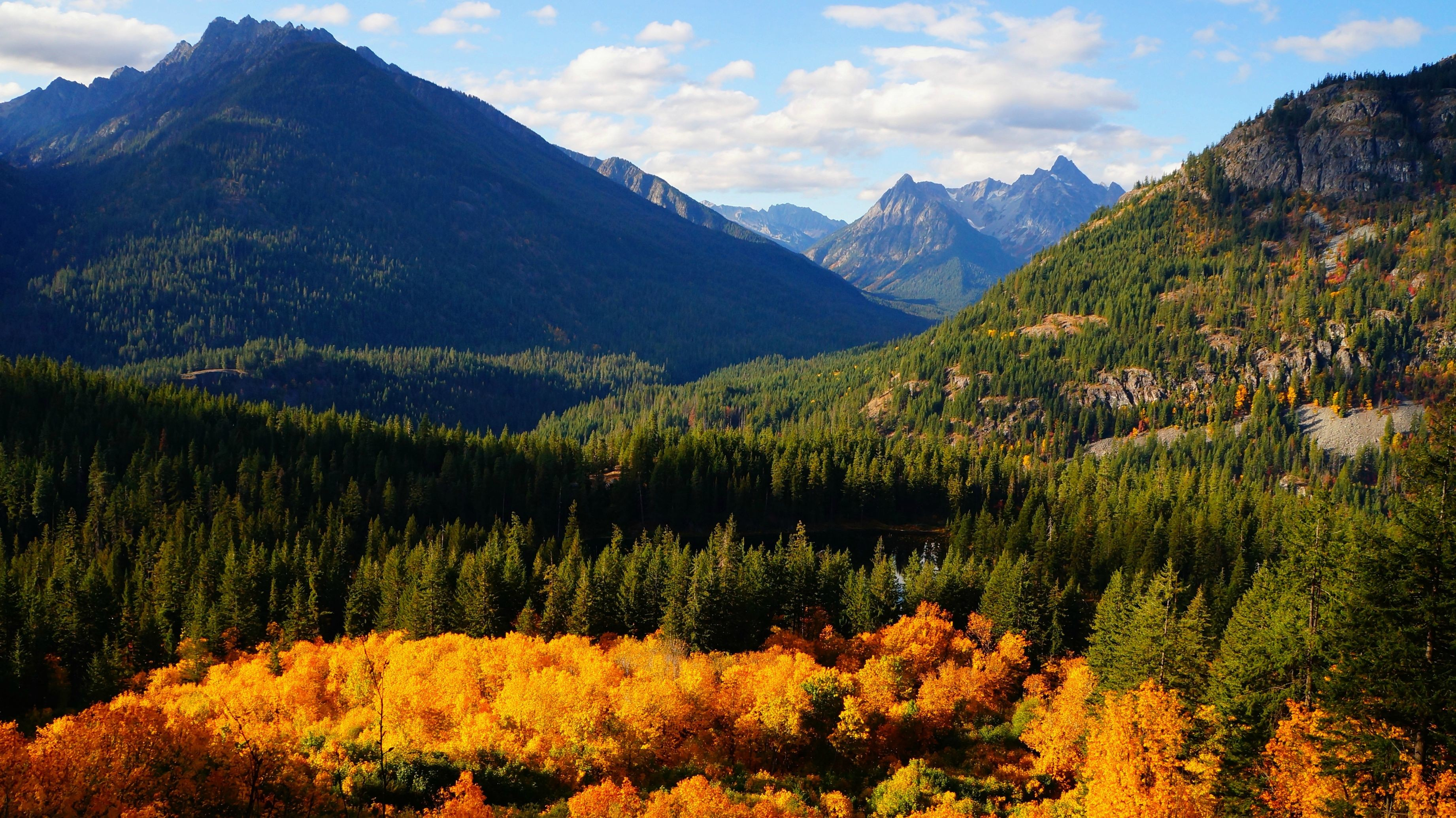Fall Cell Phone Wallpaper Pacific Northwest Wallpaper 183 ①