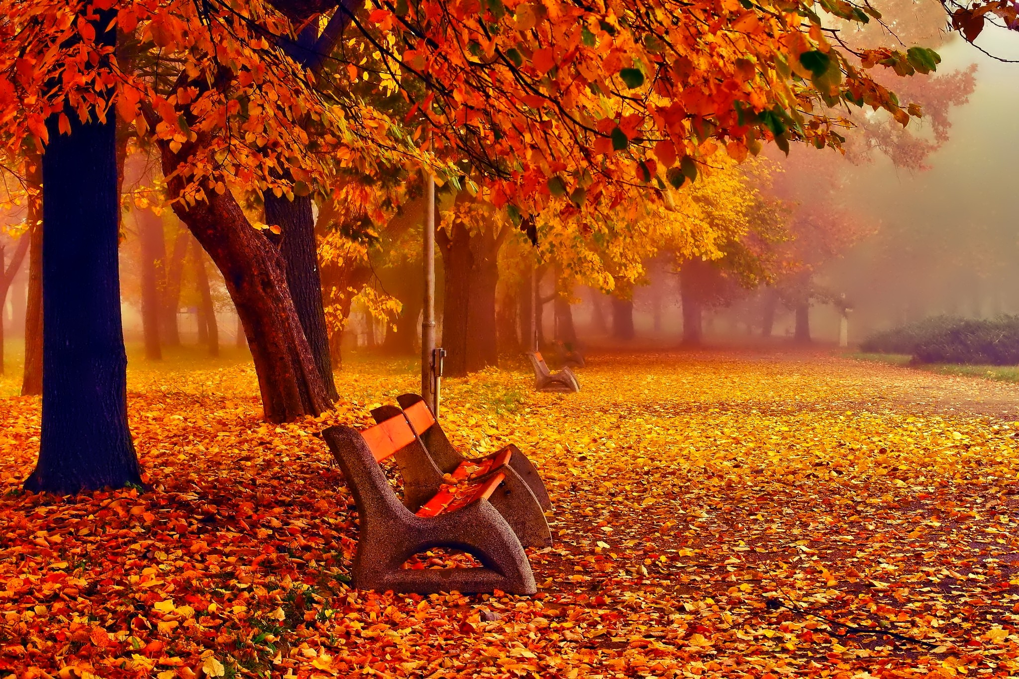 Fall Season Wallpapers For Iphone November Background 183 ① Download Free Awesome High