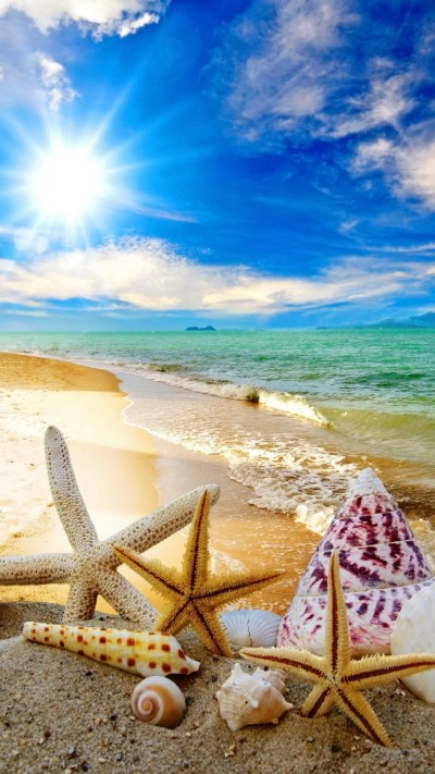 Cool Summer Backgrounds ·① WallpaperTag