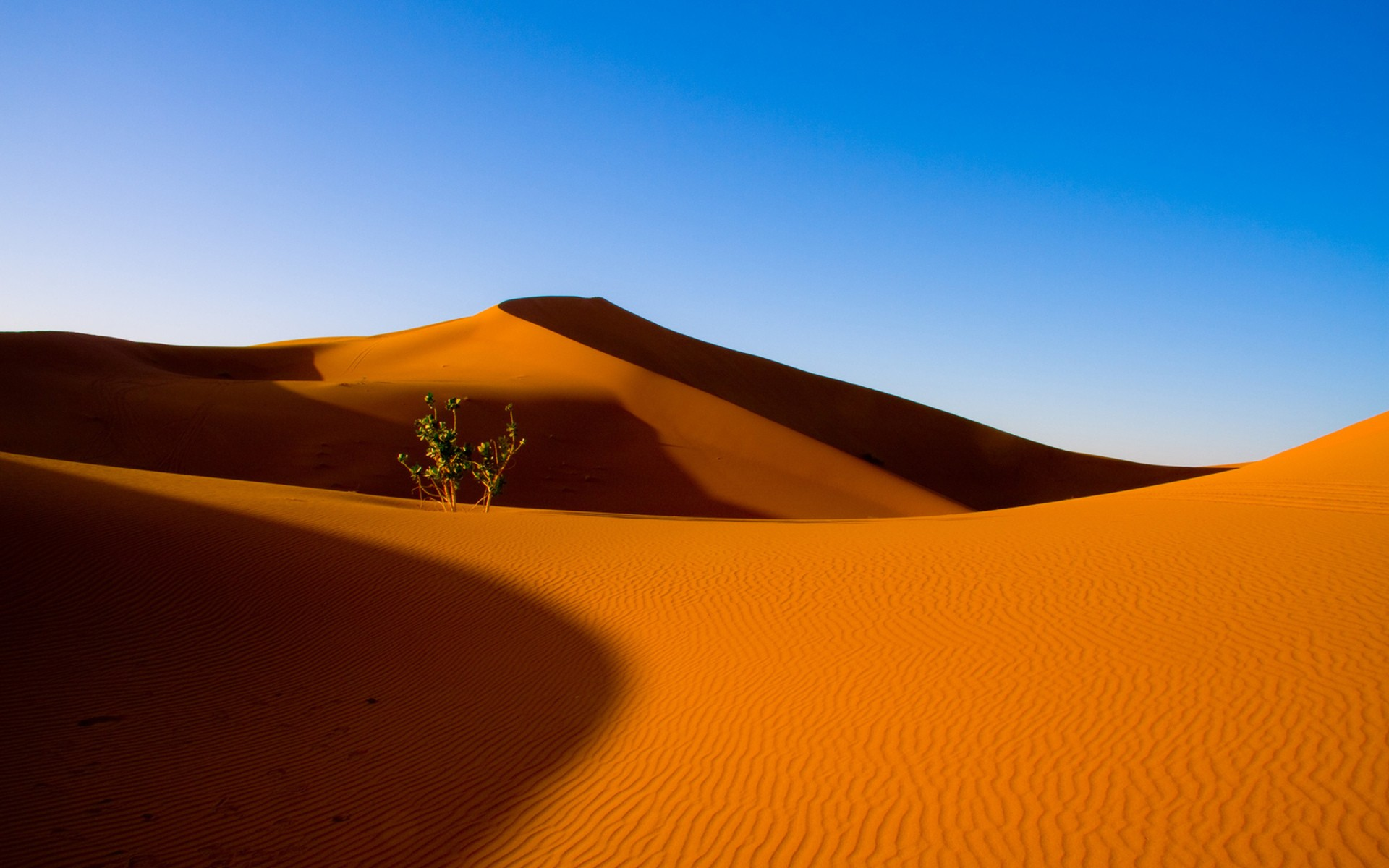 Best Wallpapers For Iphone X 4k Desert Wallpaper 183 ① Download Free Cool Full Hd Backgrounds