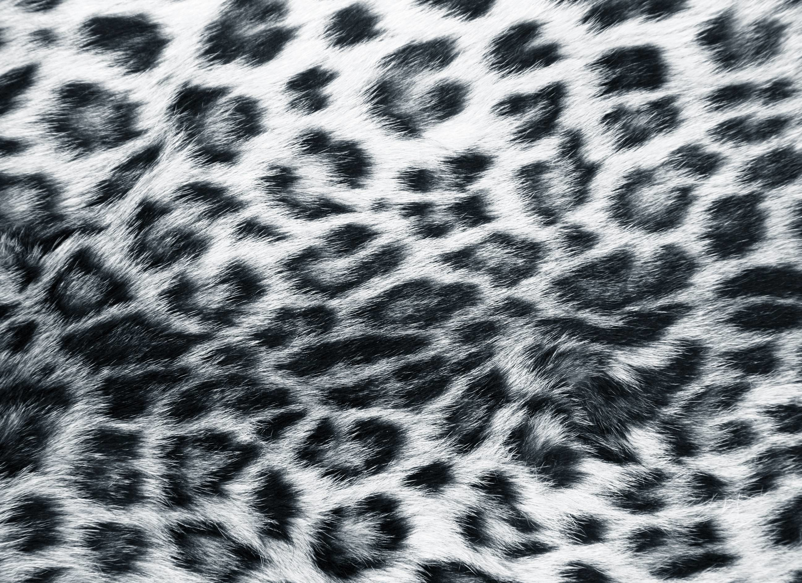 Glitter Animal Print Wallpaper Black Leopard Background 183 ①