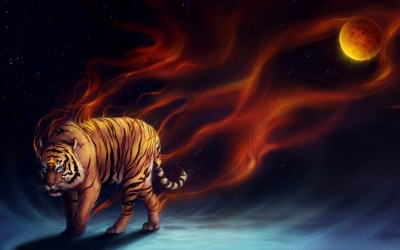 Cool Tiger Wallpapers ·①