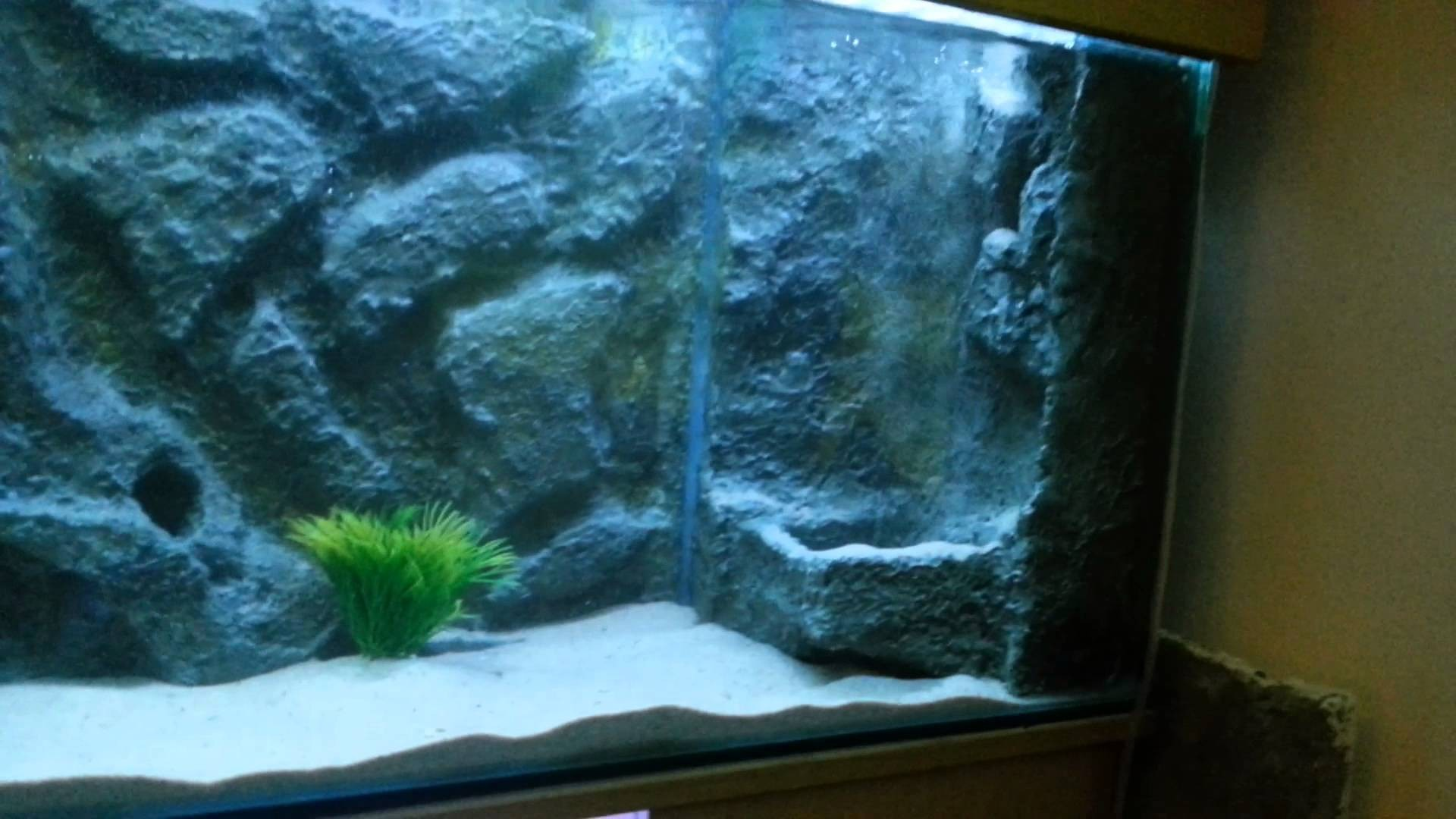 Iphone Wallpaper Waterfall Aquarium Background 183 ① Download Free Wallpapers For