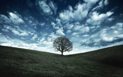 qHD wallpaper ·① Download free beautiful HD backgrounds for desktop, mobile, laptop in any ...
