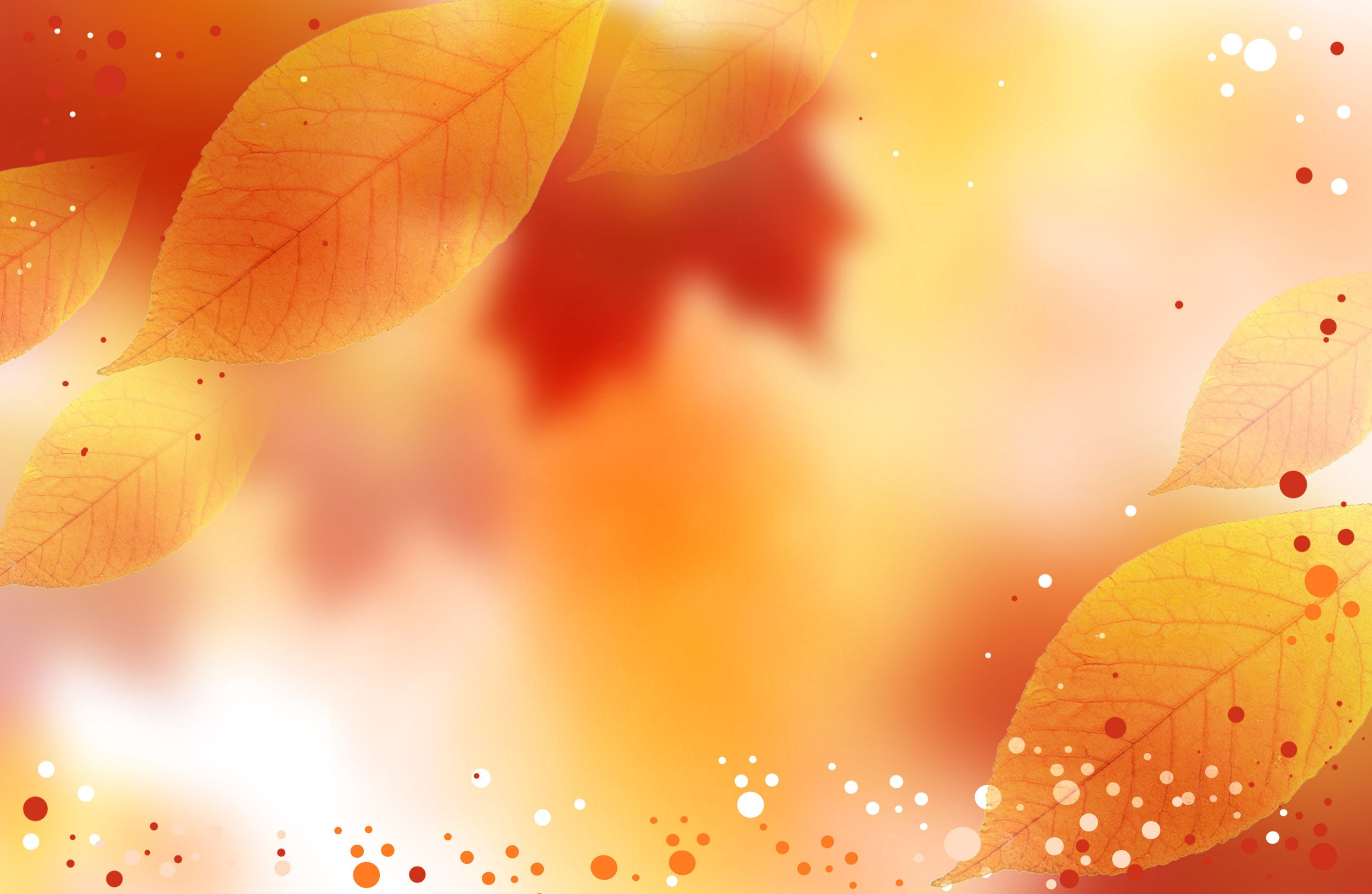 Hd Wallpapers For Mobile Free Download 480x800 70 Fall Color Backgrounds 183 ① Download Free Awesome