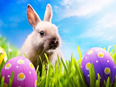 Easter Desktop Backgrounds ·①
