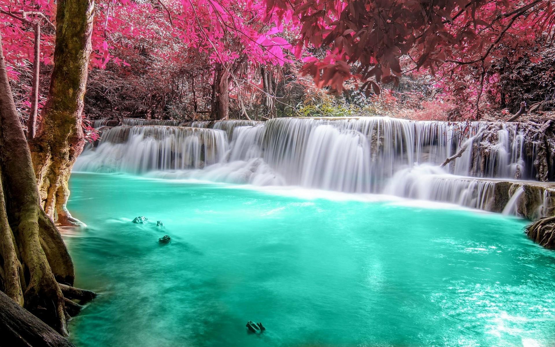 Free Animated Falling Leaves Wallpaper Waterfall Desktop Wallpaper 183 ①