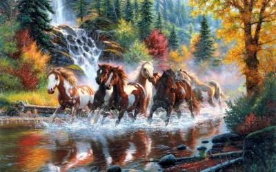 Horses Wallpaper ·①