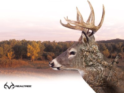 Realtree Deer Wallpaper ·①