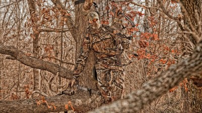 Realtree wallpaper ·① Download free stunning HD backgrounds for desktop, mobile, laptop in any ...