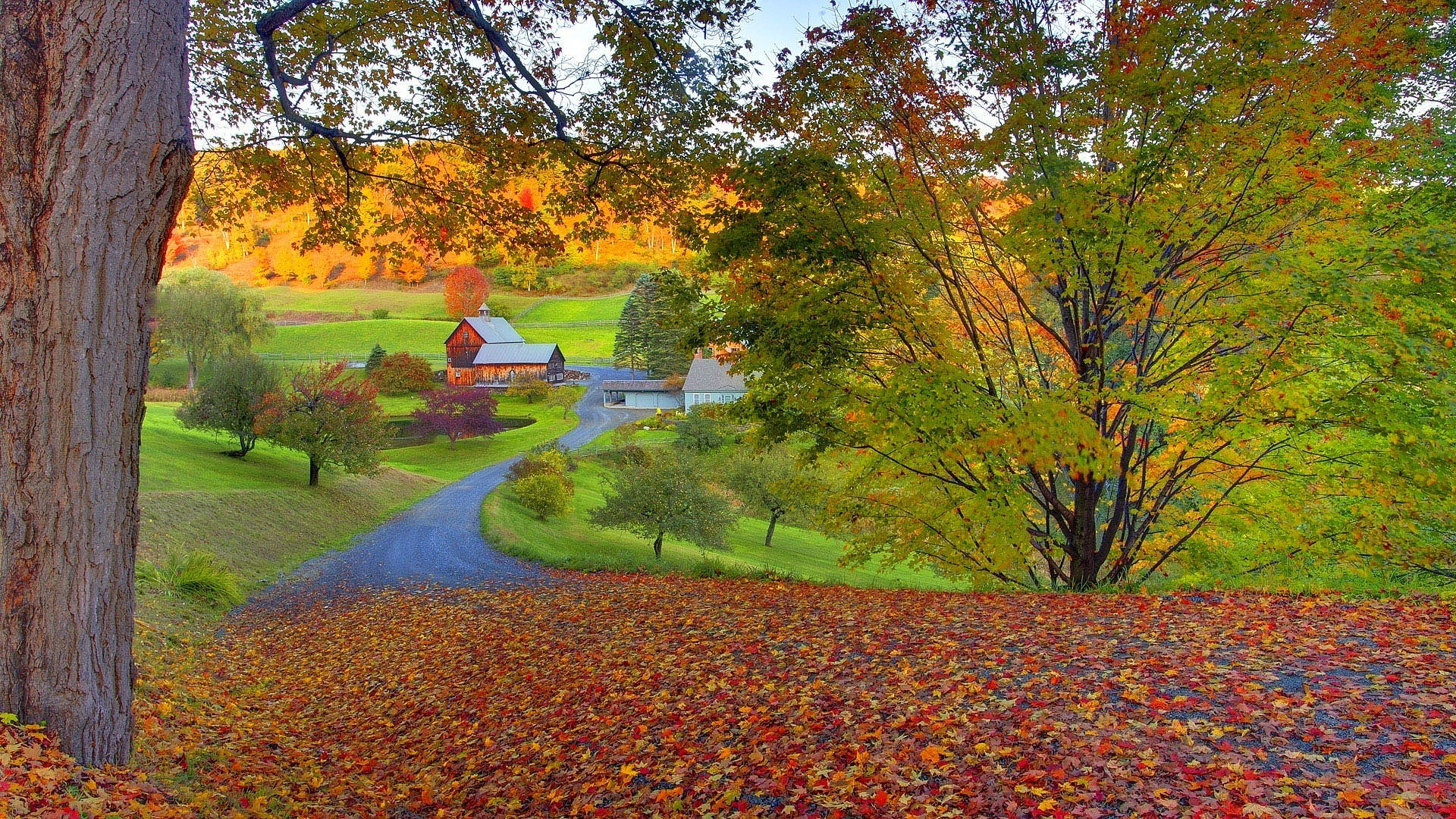 New England Fall Foliage Desktop Wallpaper New England Fall Wallpaper 183 ①