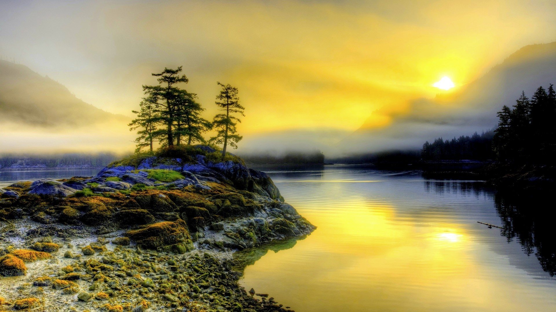 Free Fall Cell Phone Wallpapers Pacific Northwest Wallpaper 183 ①