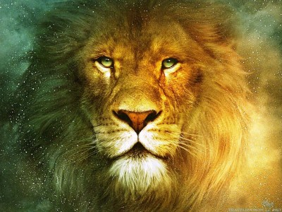 Lion Wallpapers ·①