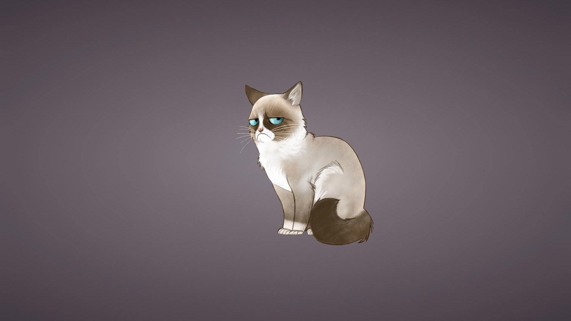 3d Wallpaper For Computer Gray Cats Cartoon Cat Wallpaper 183 ① Wallpapertag