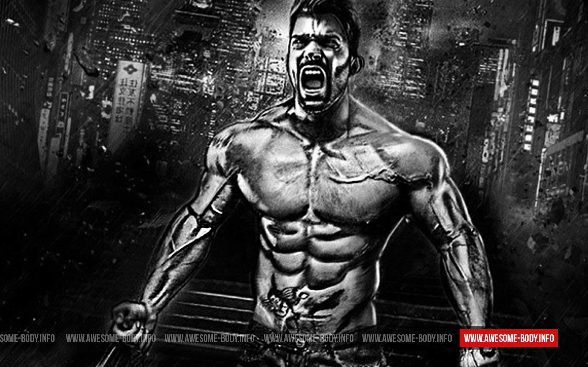 Arnold Schwarzenegger Quotes Wallpaper Bodybuilding Wallpaper Hd 2017 183 ①