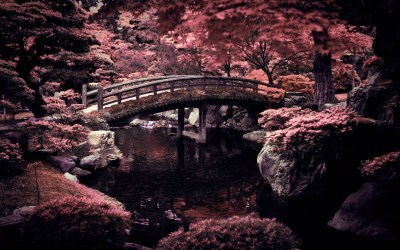 Japan wallpaper ·① Download free cool HD wallpapers of Japan for desktop computers and ...
