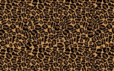Pictures of Cheetah Print Wallpaper ·① WallpaperTag
