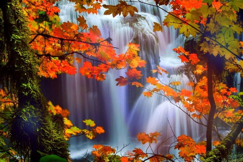 Fall Colored Background Wallpaper Fall Wallpaper For Desktop 183 ① Download Free Full Hd