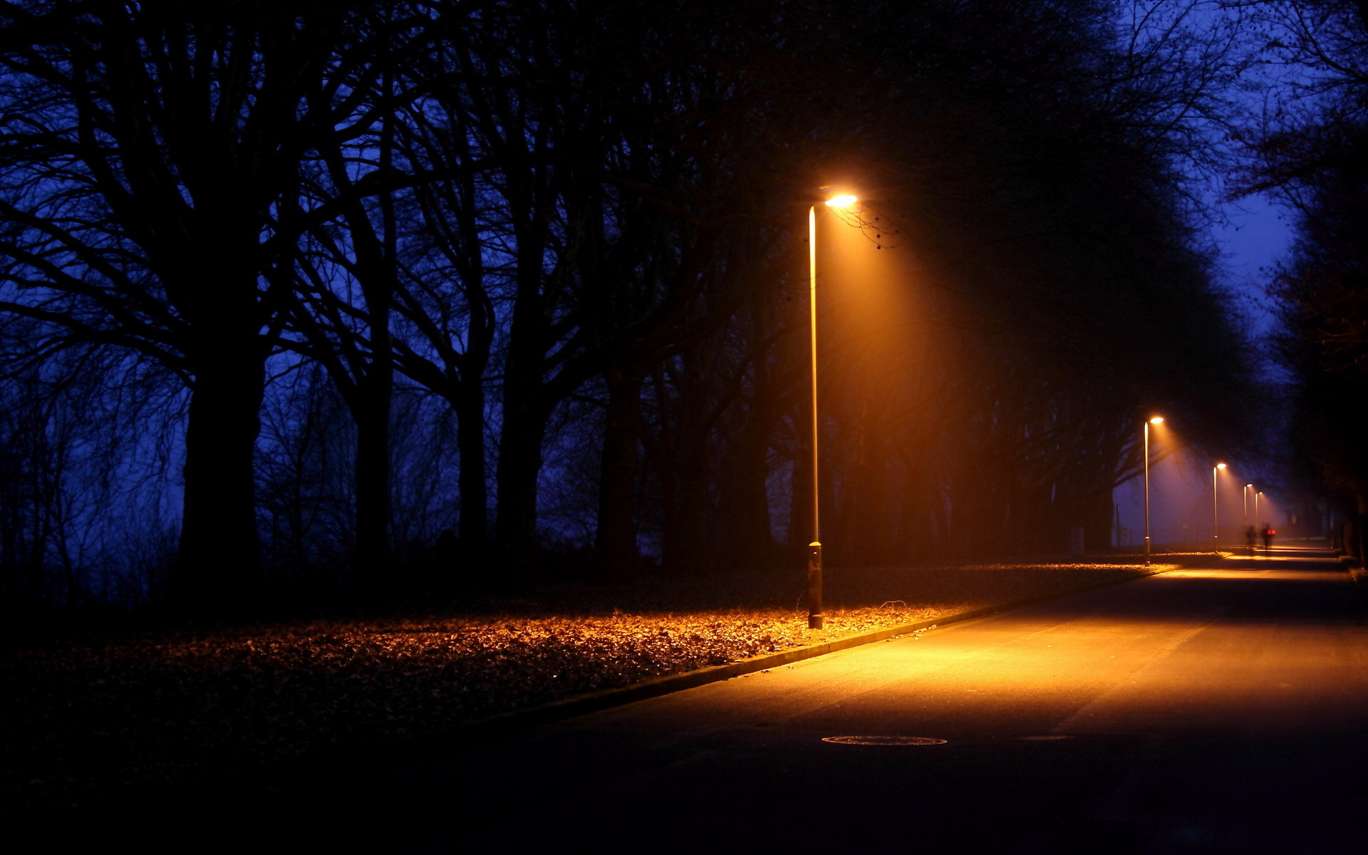 Street Light At Night Painting Nature Night Lights Lamps Lamp Post Trees Lightbeams Roads