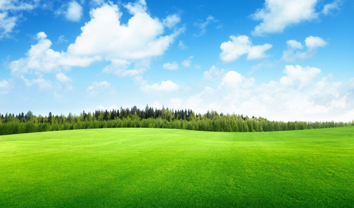Himmel Baby Clouds Trees Field Of Grass Beautiful Nature Landscape Sky