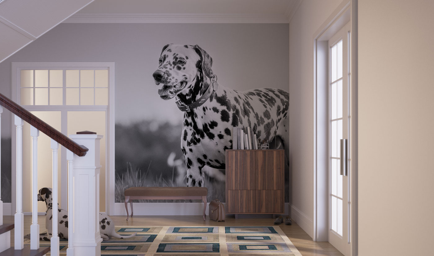 Canvas Printing Perth Wallstgo Co Uk Bespoke Wallpaper Printing In Perth