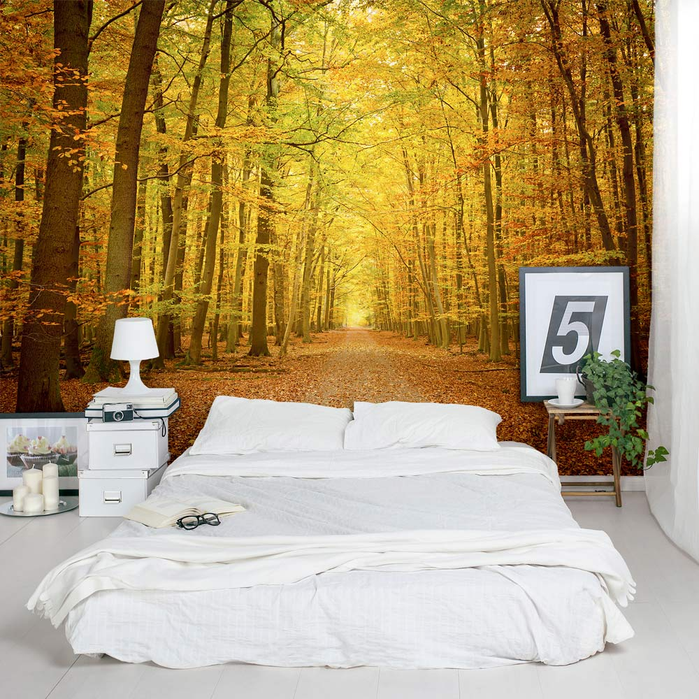 Removable Wallpaper Murals Autumn Forest Path Wall Mural