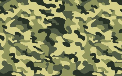 Green Military Camouflage Wallpapers HD / Desktop and Mobile Backgrounds