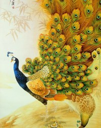 Sketch Peacocks Wallpapers HD / Desktop and Mobile Backgrounds