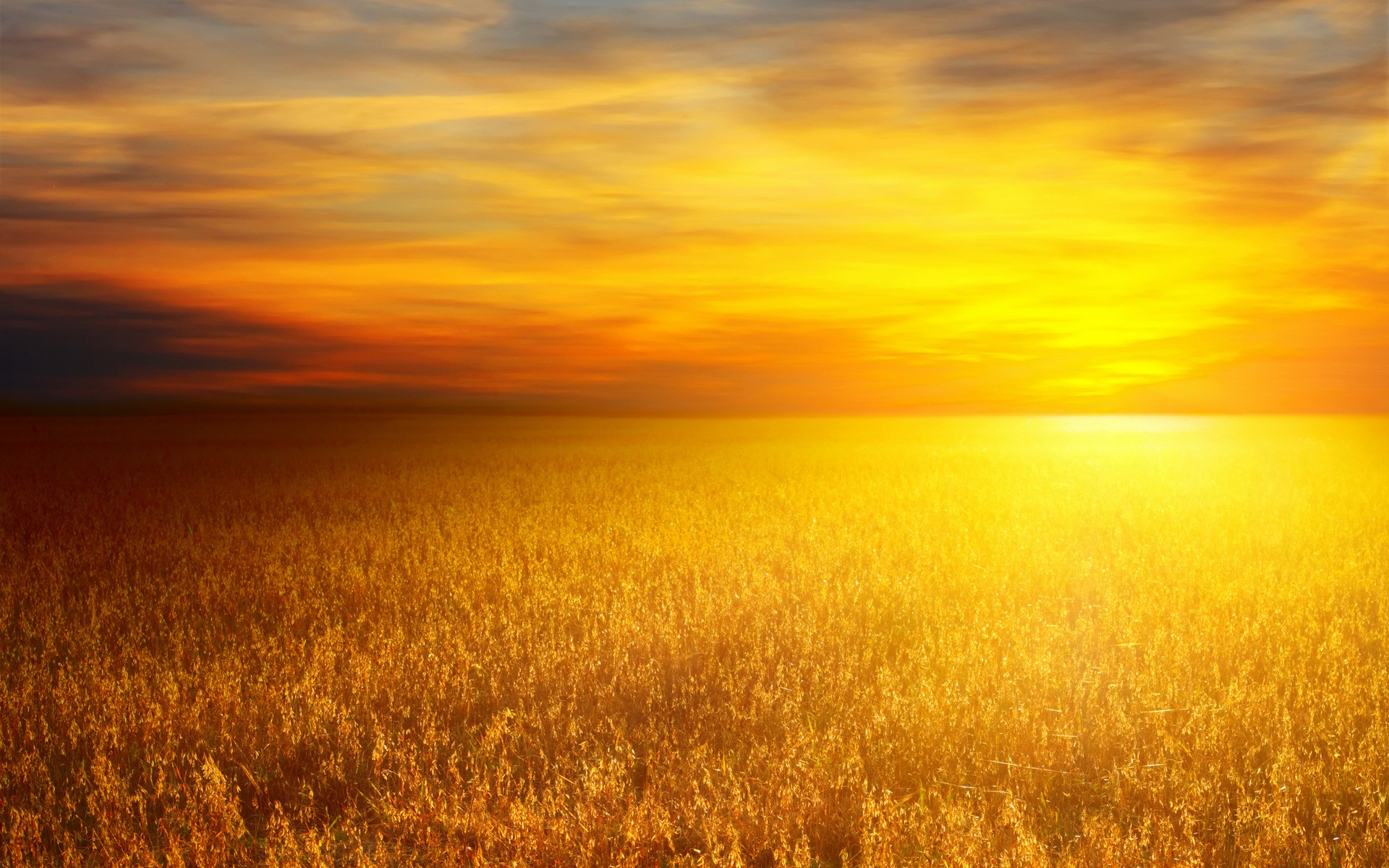 3d Animated Gif Wallpaper For Mobile Nature Landscape Sunset Orange Field Sky Clouds