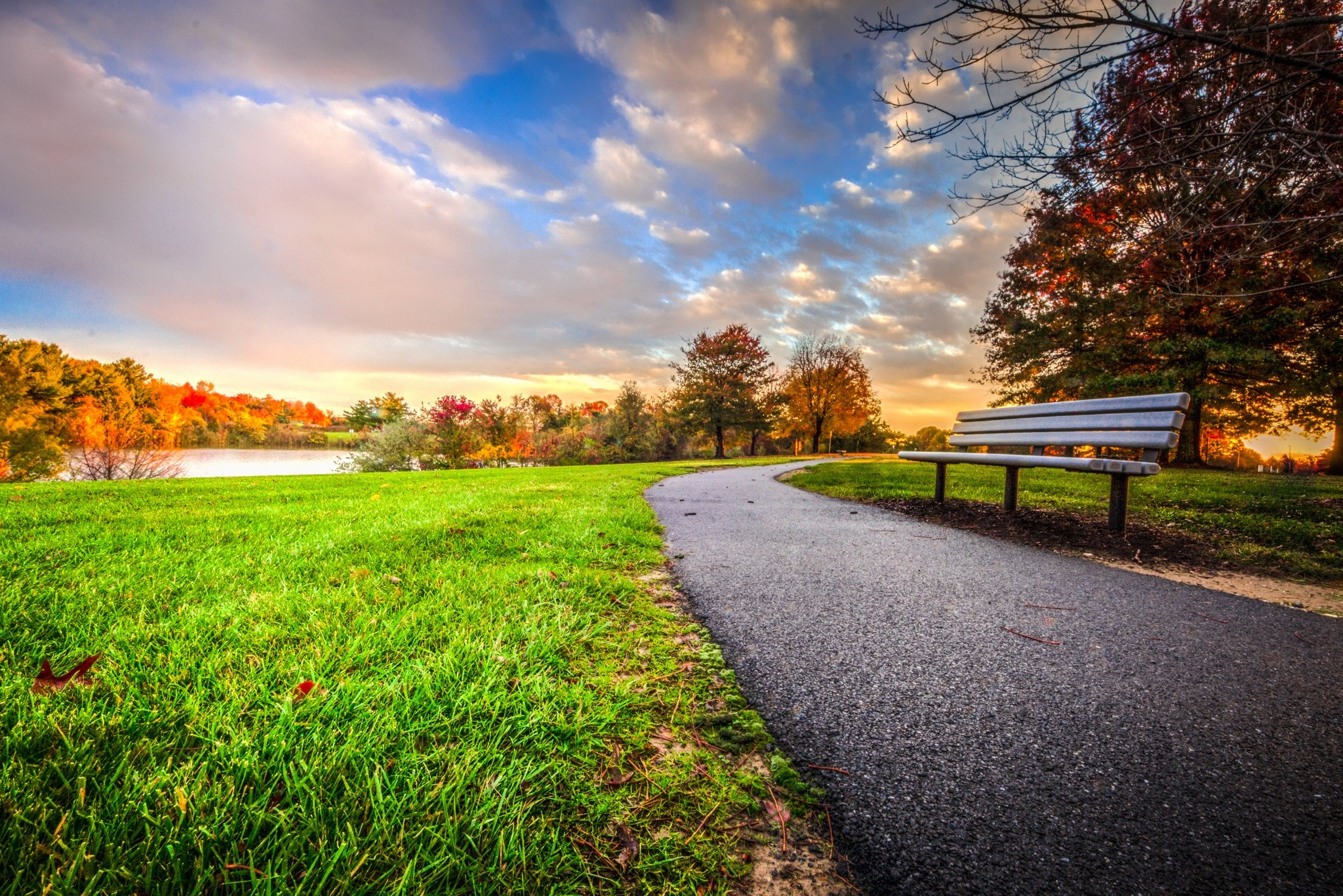 The Fall Movie Wallpaper Sunset Bench Park Trees Clouds Grass Fall Nature