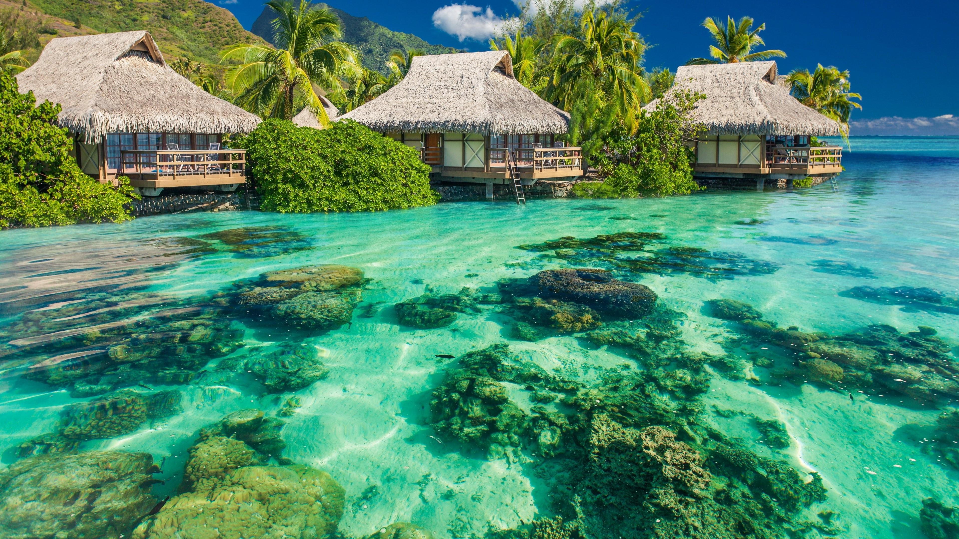 Free 3d Scenic Wallpaper Beach Island Nature Landscape Wallpapers Hd Desktop