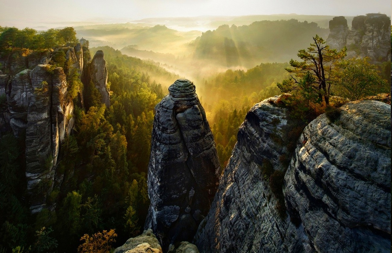 Cars Movie Hd Wallpapers 1080p Forest Cliff Mist Valley Trees Sunrise Sun Rays