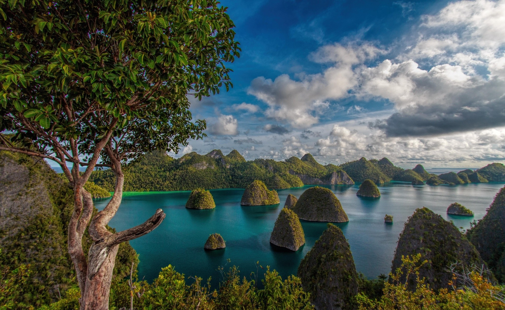 Rajat 3d Wallpaper Mountain Clouds Forest Tropical Raja Ampat Indonesia