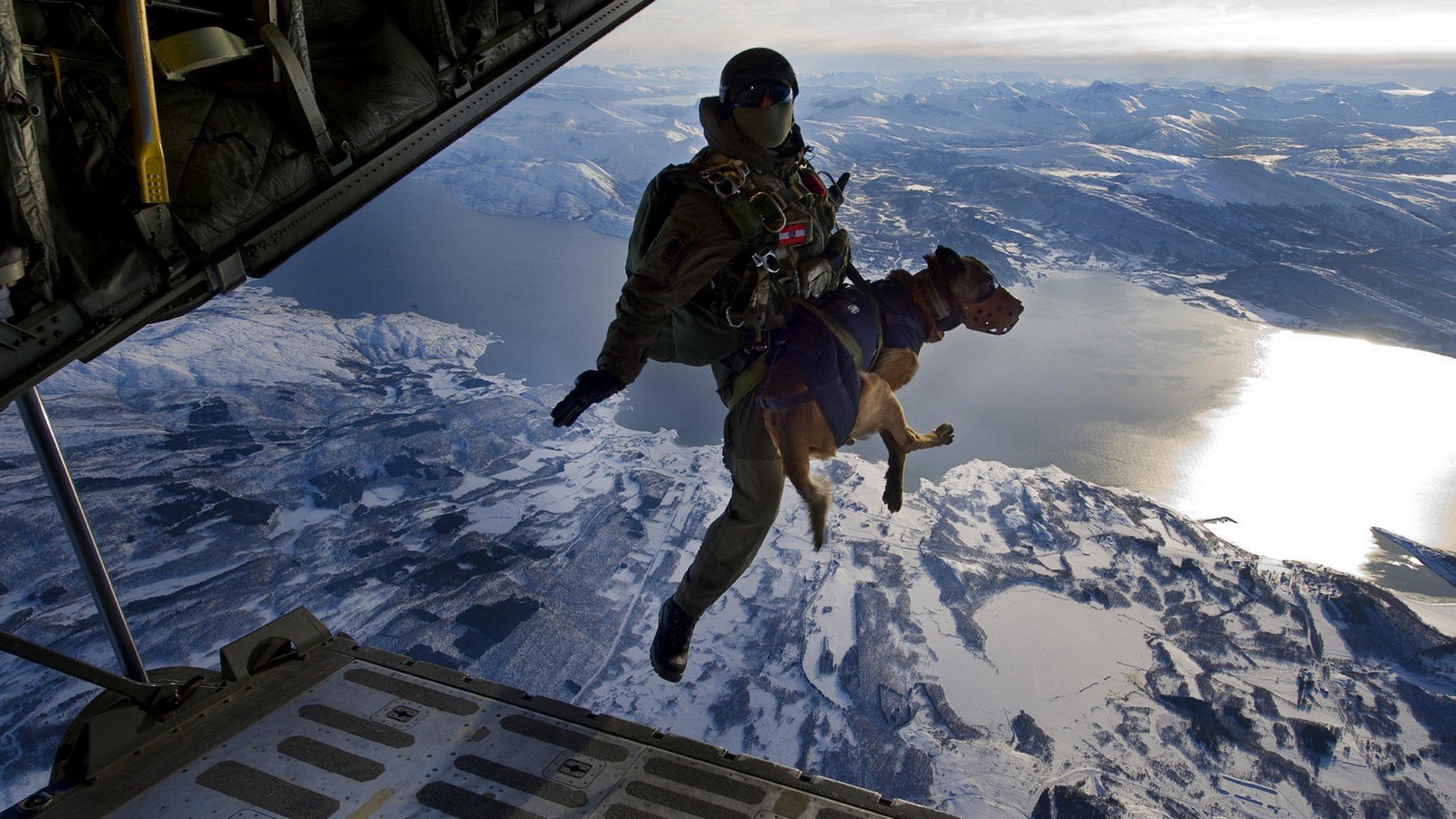 Husky Dog Hd Wallpapers Dog Soldier Landscape Lake Mountain Airplane