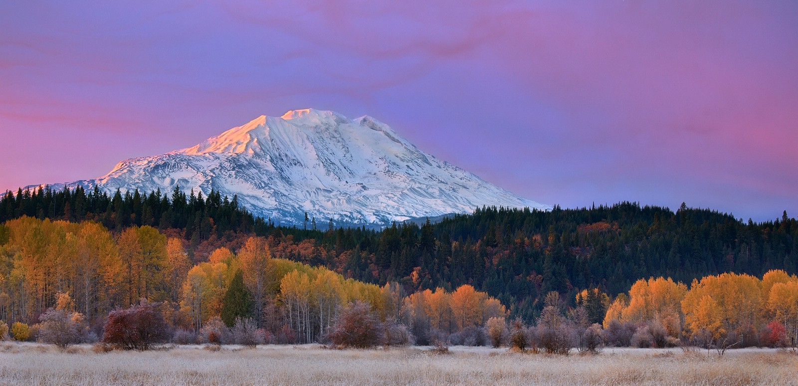 Home Fall Desktop Wallpapers Mountain Fall Washington State Forest Snowy Peak