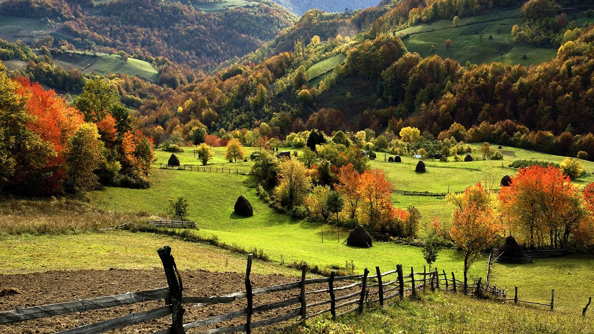 3 Creen Wallpaper Fall Nature Landscape Trees Forest Mountain Hill Field