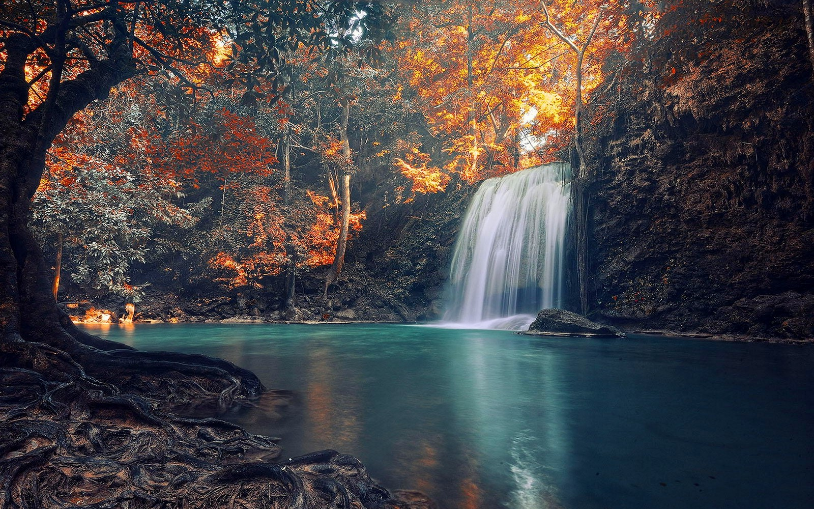 Fall Desktop Wallpaper Full Screen Nature Waterfall Trees Landscape Roots Fall Tropical