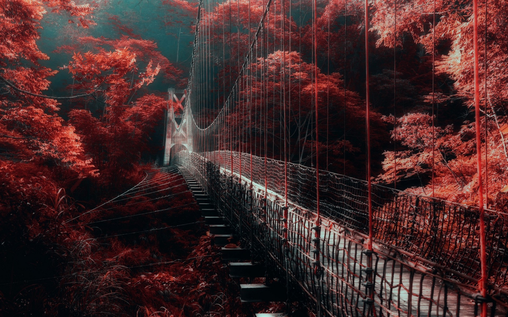 Dark Fall Wallpaper Nature Landscape Red Forest Bridge Mist Trees