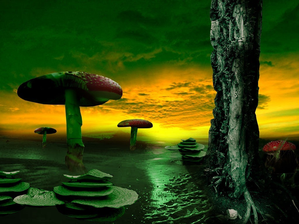 3d Mushroom Garden Wallpaper Download Landscape Nature Digital Art Artwork Fantasy Art