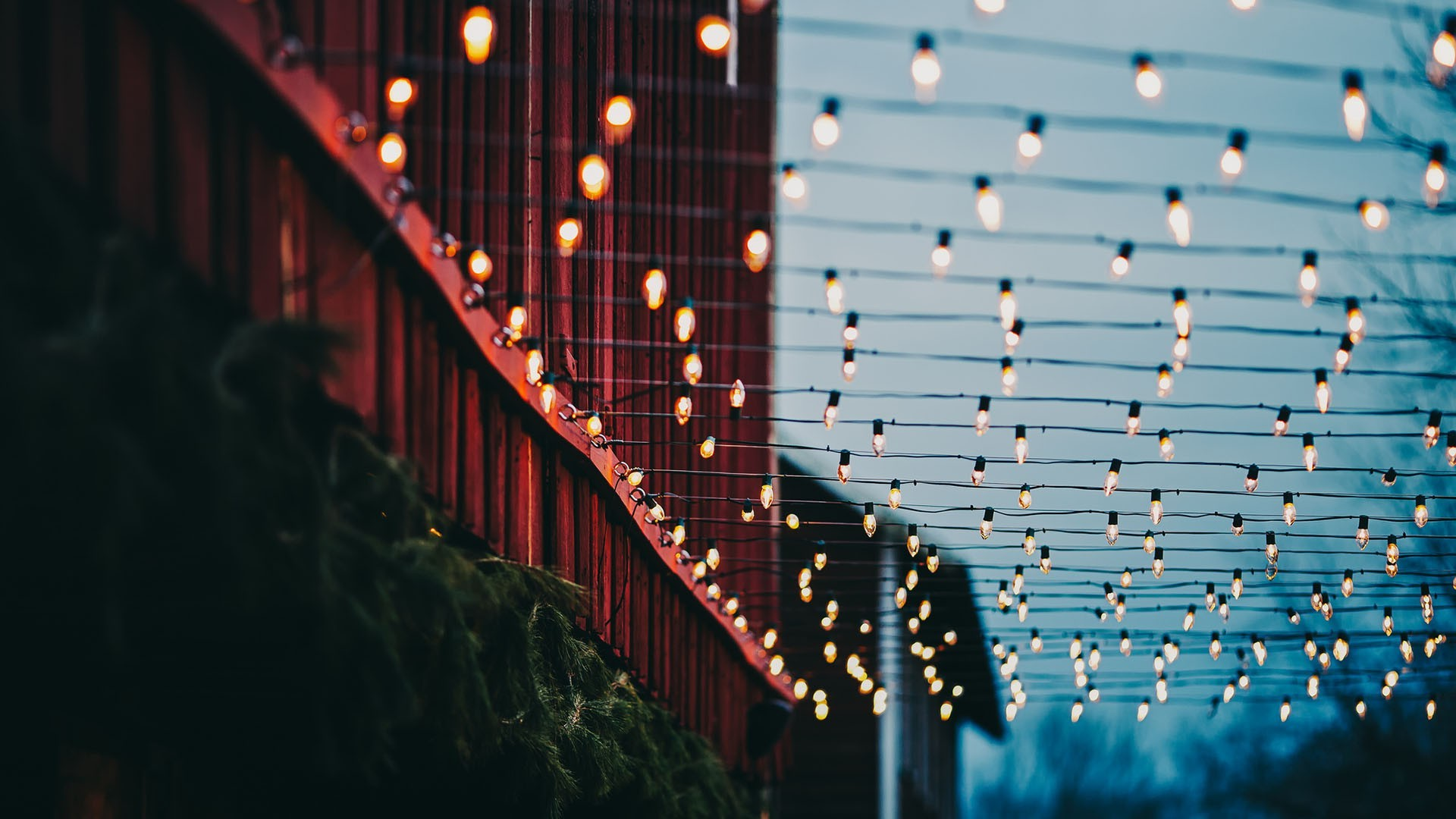 Empire State Building Wallpaper Hd Lights Christmas Lights Bokeh Wires Plants Building