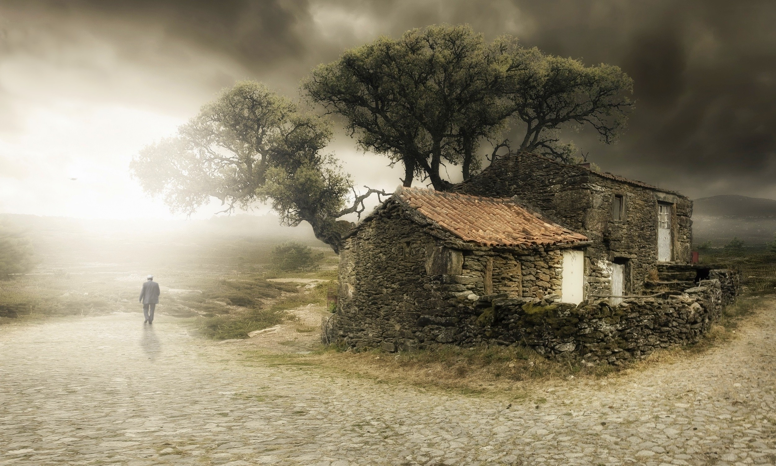 3d Hd Mobile Wallpapers Free Download House Trees Clouds Old Nature Gray Mist Landscape