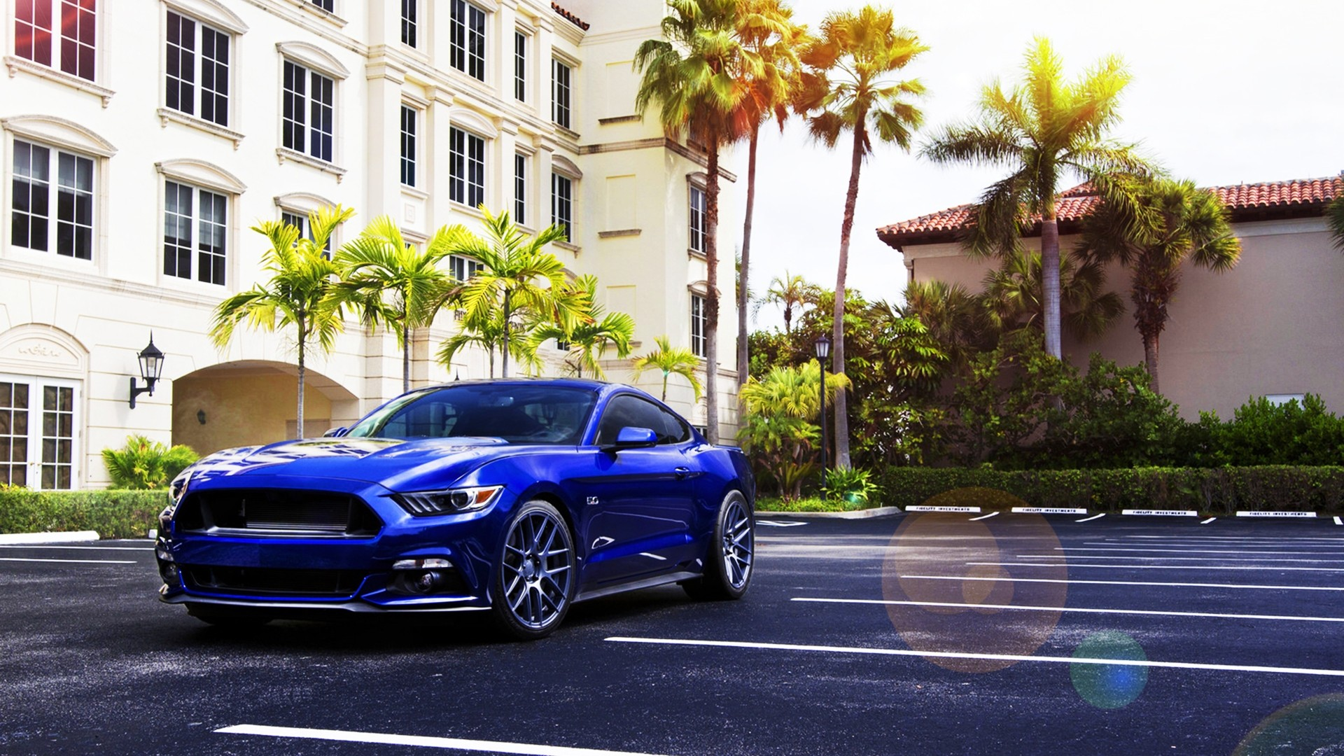 3d Mustang Wallpaper Car Ford Mustang Blue Cars Palm Trees Wallpapers Hd
