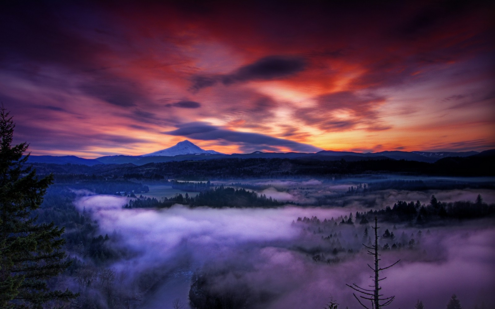 Fantasy Forest 3d Desktop Wallpaper Nature Landscape Sunset Mist Mountain Forest Clouds