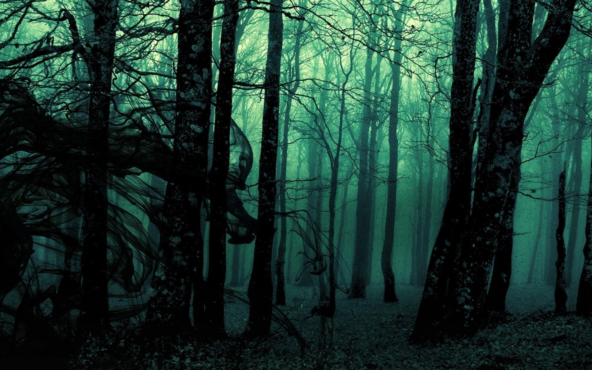 Gloomy Fall Wallpaper Forest Landscape Dark Nature Trees Photo Manipulation