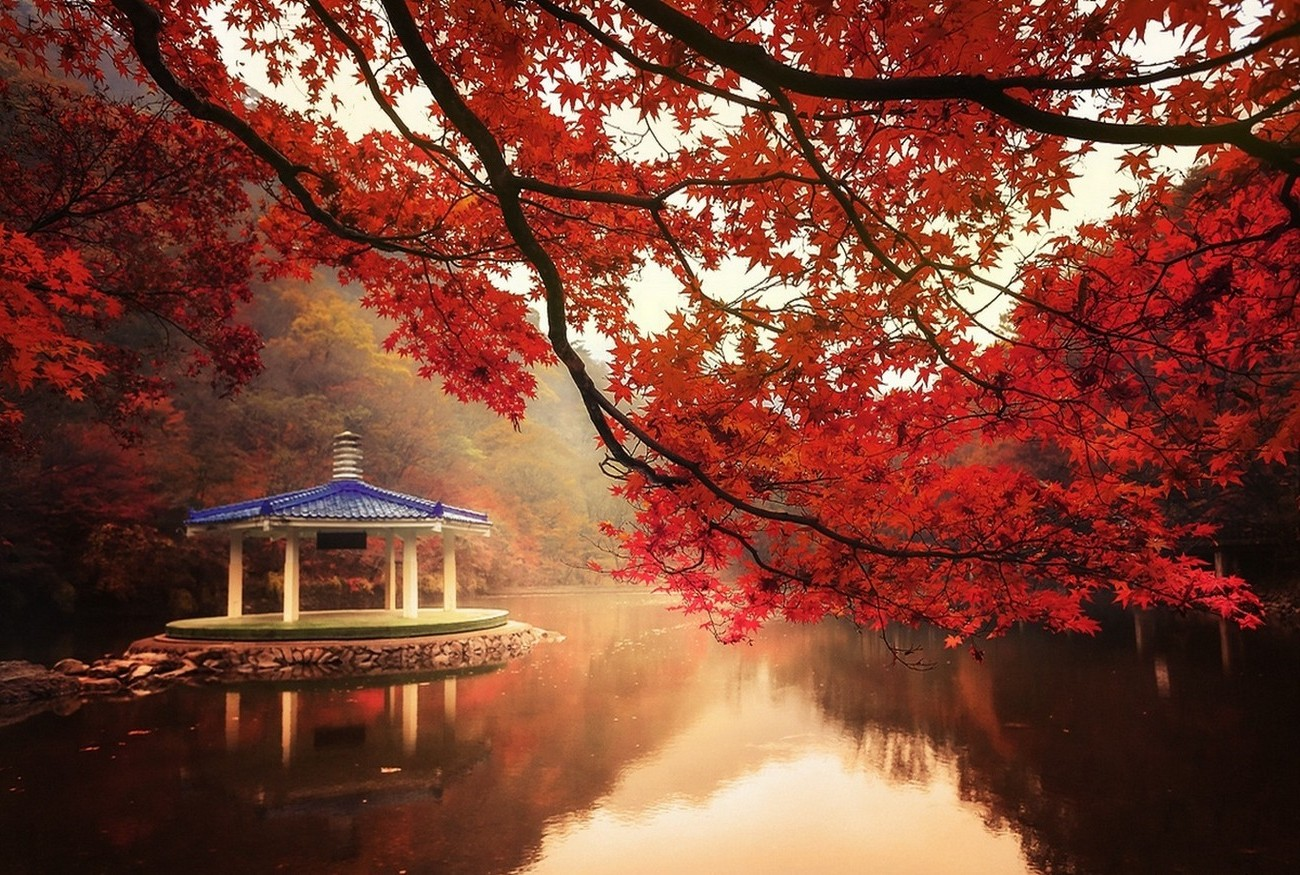 Home Screen Wallpaper Fall Nature Landscape Fall Trees Lake Hill Maple Leaves