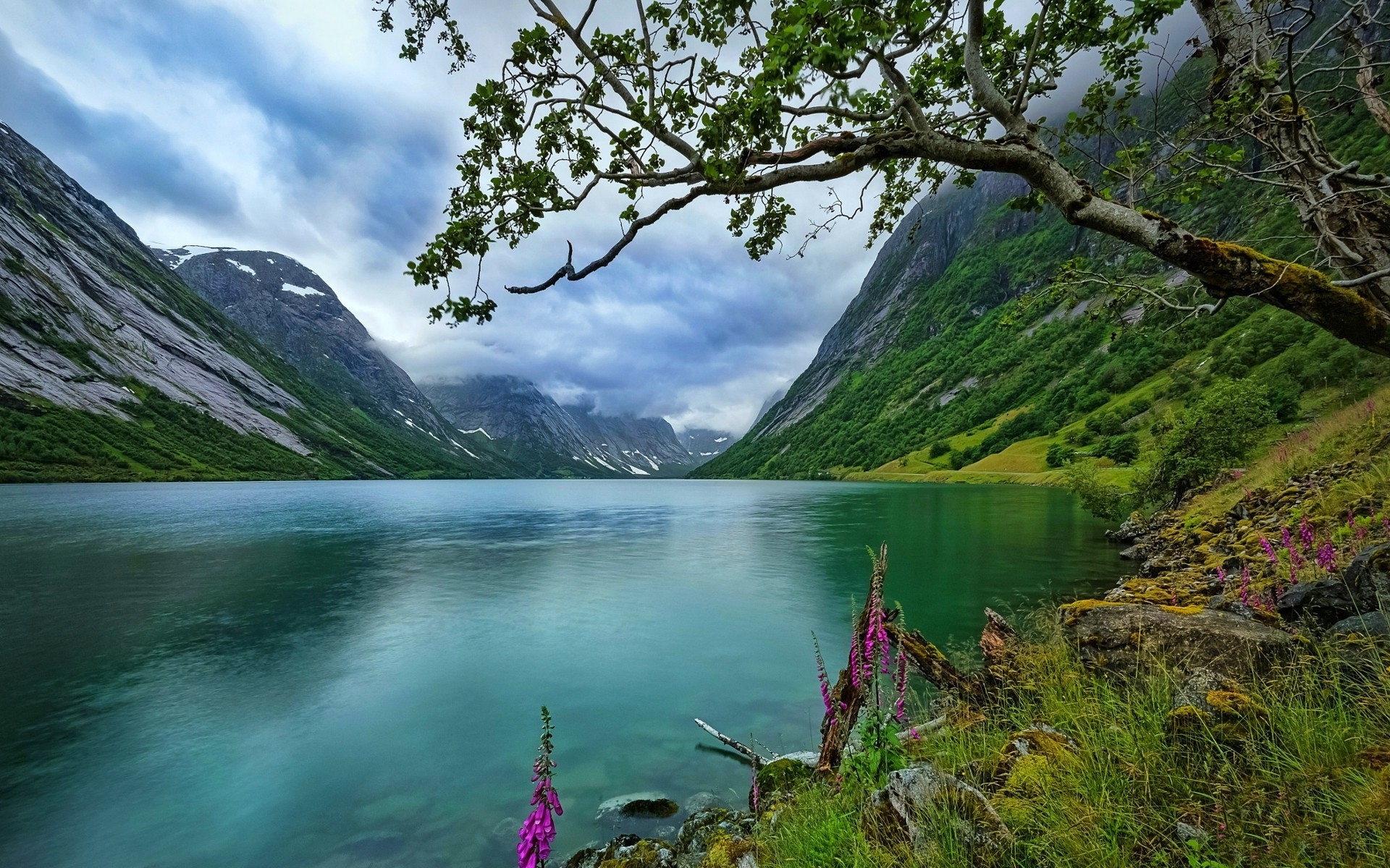 New 3d Desktop Wallpaper Hd 16 Nature Landscape Lake Wildflowers Trees Norway Grass