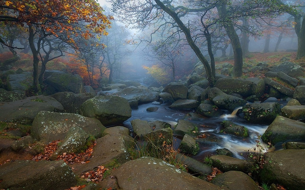 Fall Leaves Hd Desktop Wallpaper Landscape Nature Trees Fall Leaves River Morning