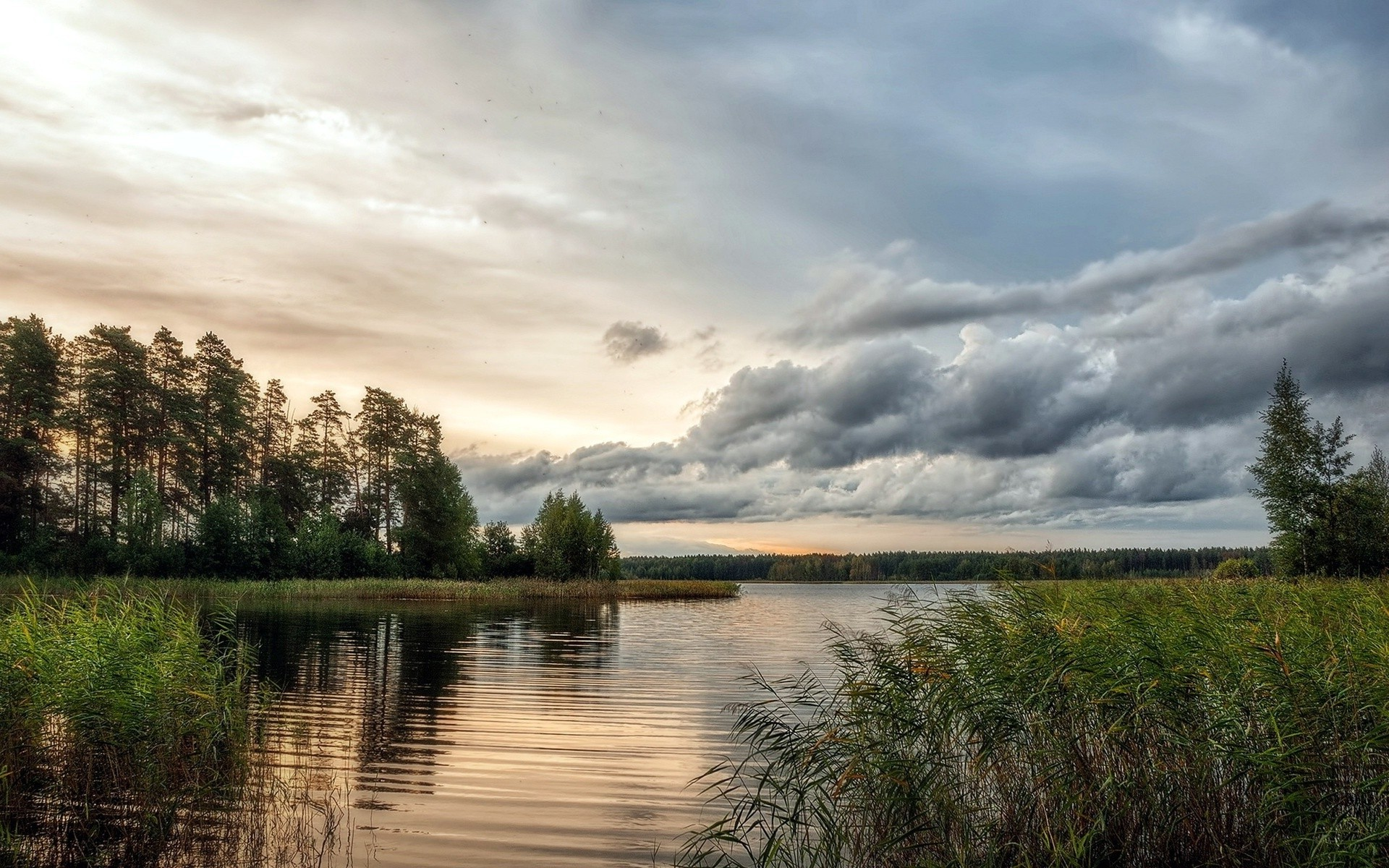 Animal Wallpaper Full Hd Nature Landscape Water Ripples Sky Clouds Evening