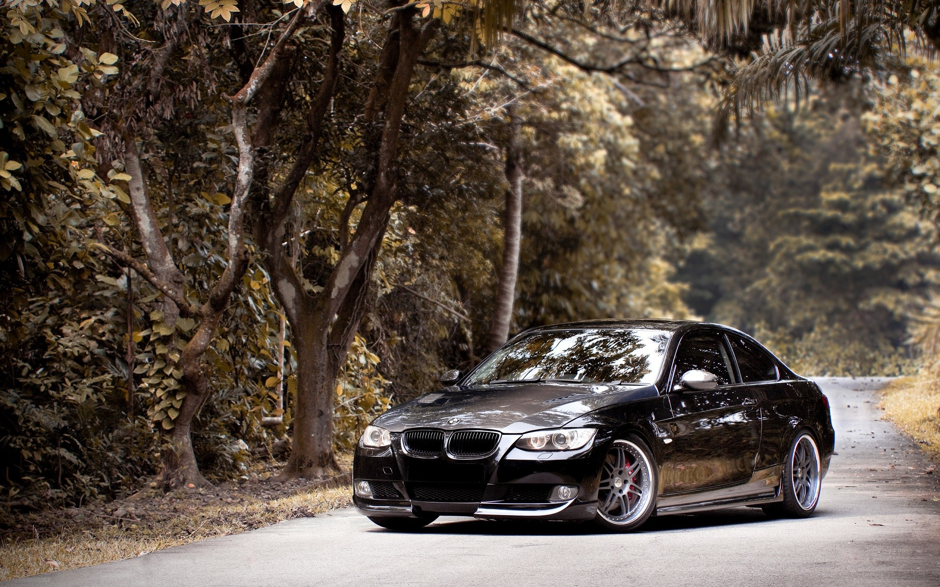 Vintage Car Wallpaper 1080p Car Bmw Road Trees Forest Bmw E92 Bmw 3 Series
